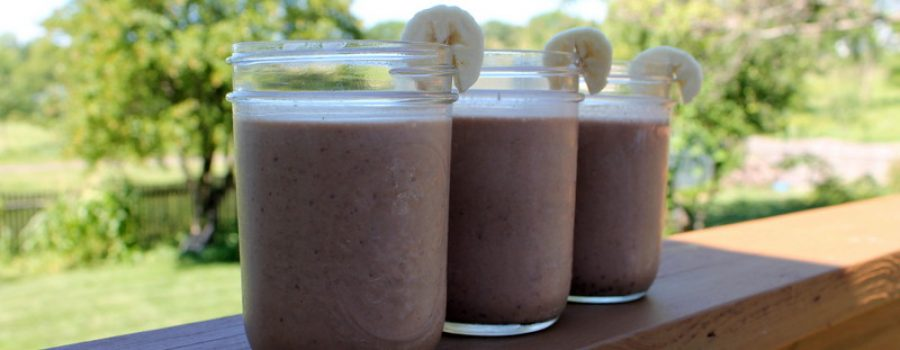 Low Fat Chocolate Peanut Butter Protein Smoothie Recipe